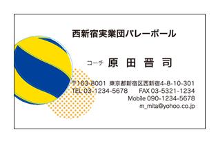 国際公認球入りバレーボールチーム用名刺
